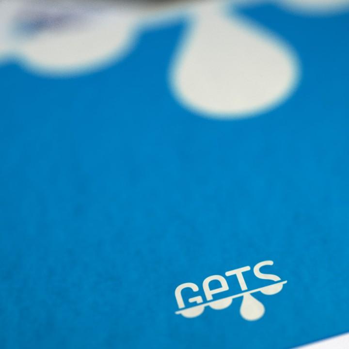 GETS Logo